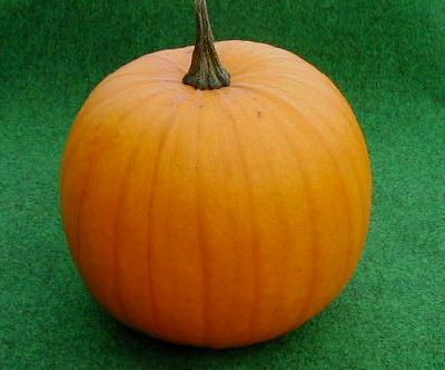 ハロウィンがぼちゃ画像2