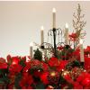 クリスマスにポインセチアが使われる理由は?