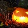 ハロウィンのディスプレイの飾り付けで注目を集めよう