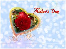 母の日 カーネーション 意味 画像2