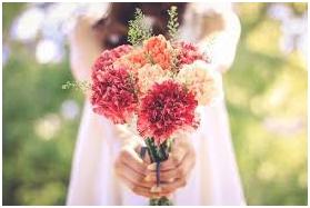 母の日 花 選び方 画像2