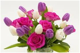 母の日 花 選び方 画像3